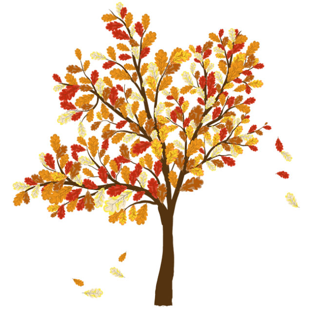 Transparent seasons tree cycle. Colorful clip art for