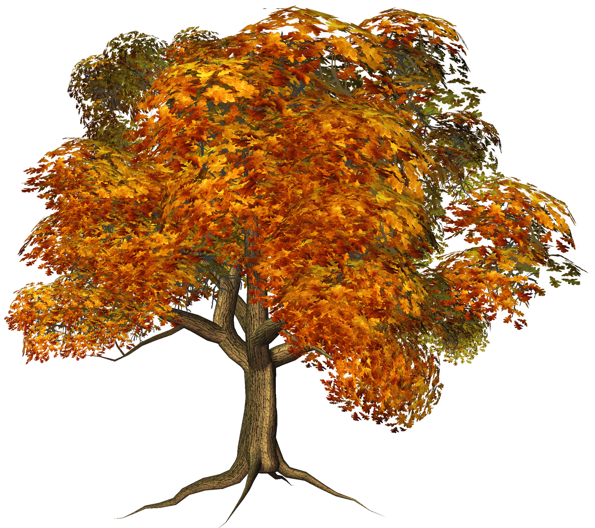 Fall tree clipart png. Large gallery yopriceville high
