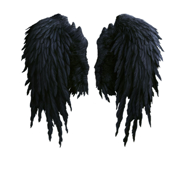 Falling angel feathers png. Wings feathered and bird