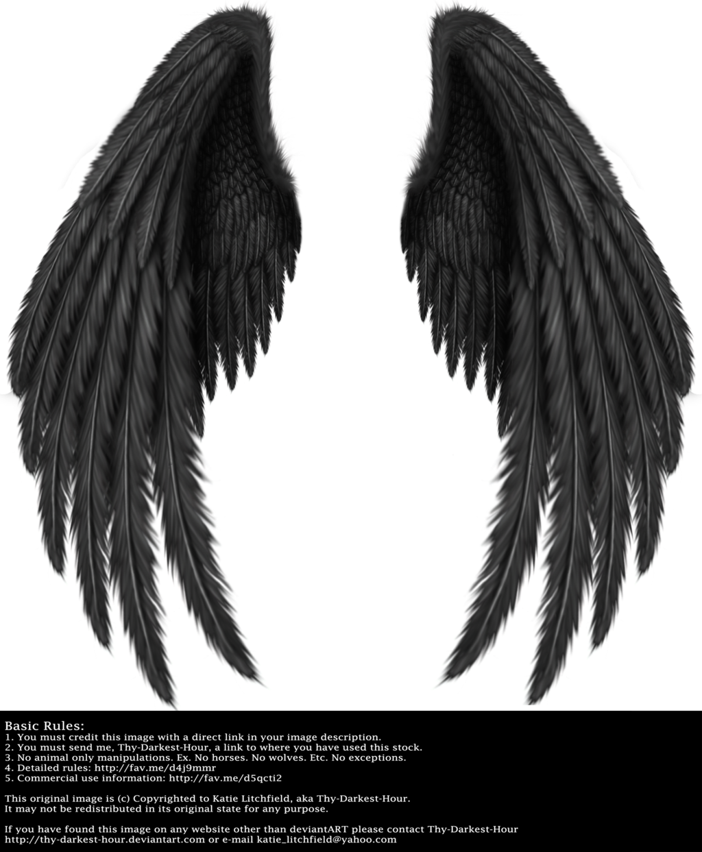 Falling angel feathers png. Winged fantasy v black