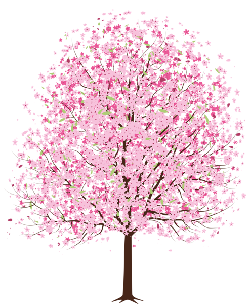 Falling cherry blossom png. Pink spring deco tree