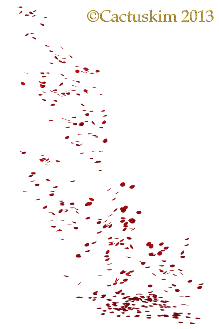 rose with petals falling png
