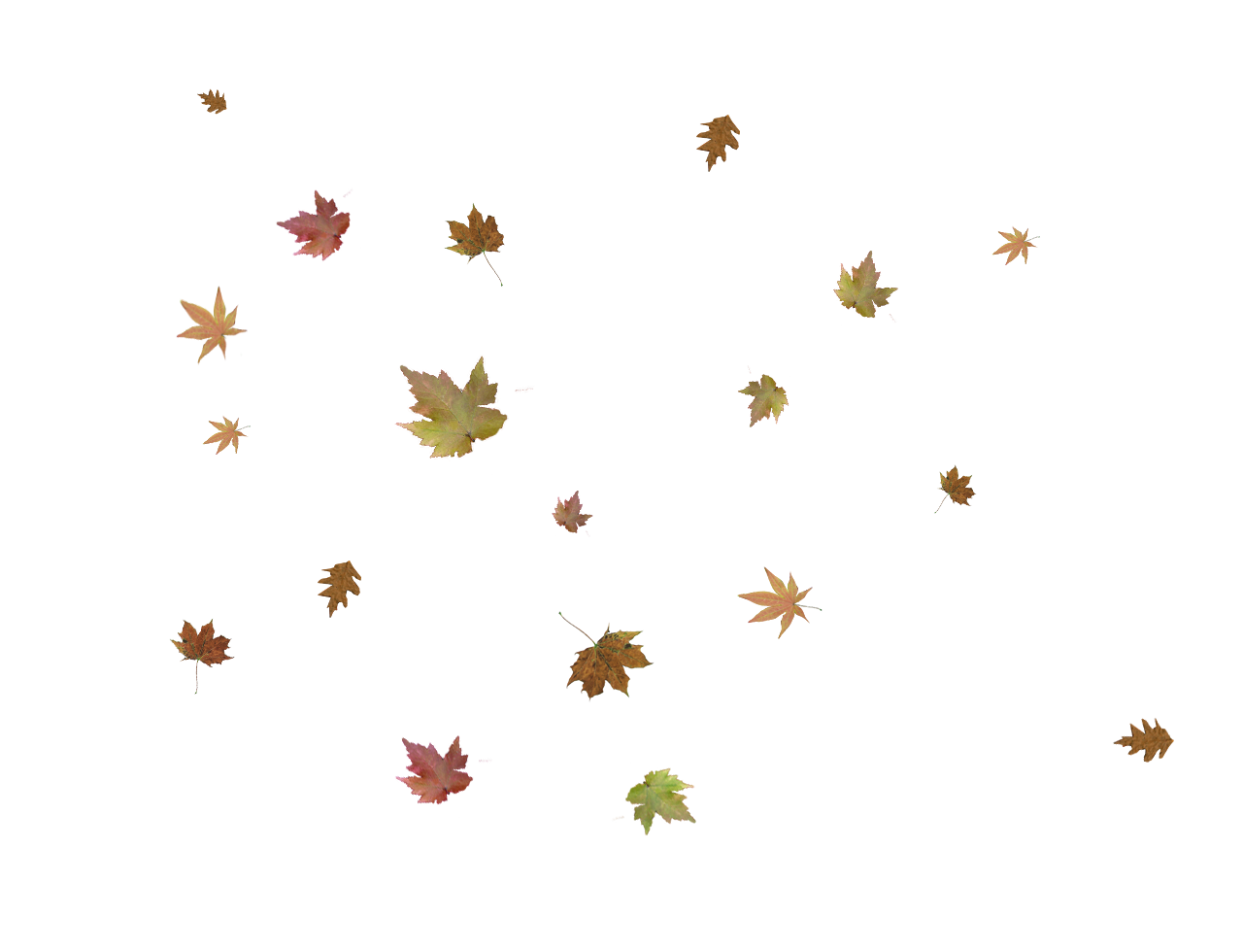 Falling leaves png. Autumn pic arts
