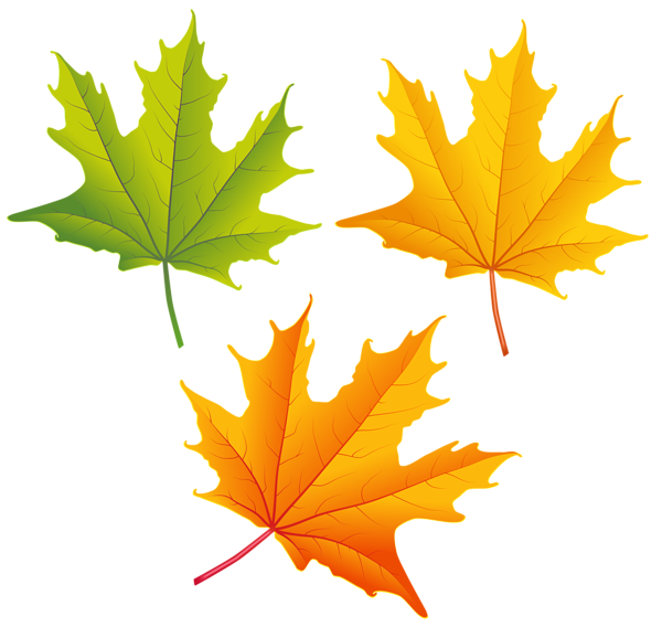 Falling leaves png images. Autumn high quality image
