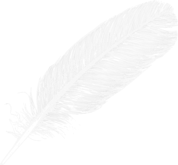 Flying feathers png. Gallery recent updates image