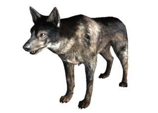 Vicious dogs png. Dogmeat fallout the vault
