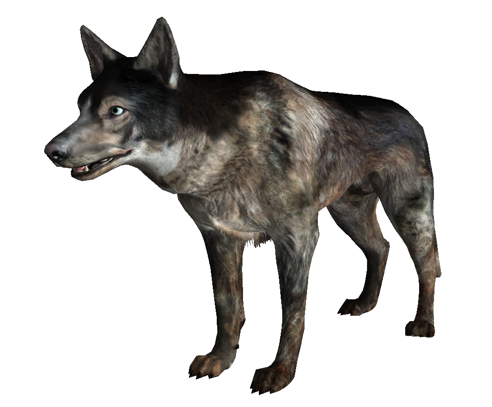 Fallout 4 dog png. Wiki fandom powered by