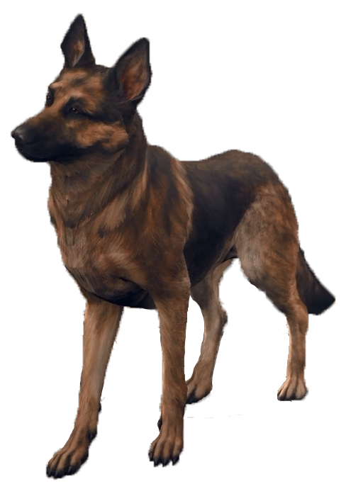 Fallout 4 dog png. Fandom powered by
