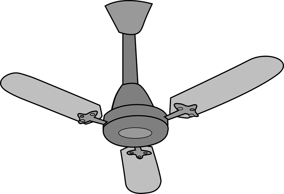 Fan clipart sealing. Png transparent images wallpapers