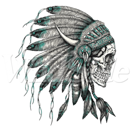 Fang drawing skull. Indian headress the wild