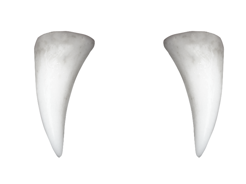 Fangs png. Vampire teeth transparent images
