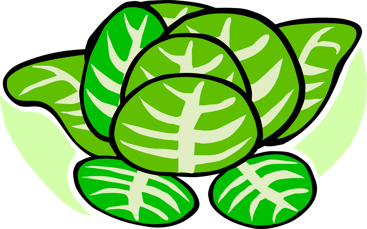 Farm clipart cabbage. Reports due may