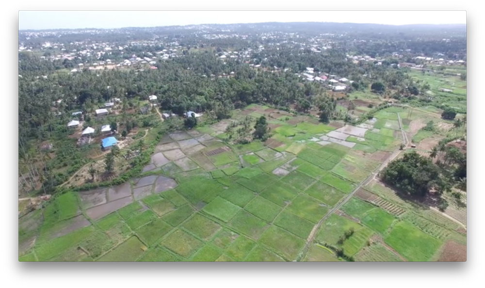 Farmland vector aerial landscape. How drones are being