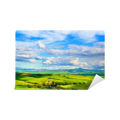 Farmland vector horizon. Tuscany and cypress trees