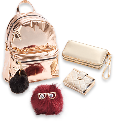 Fashion accessories png
