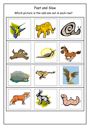 Fast clipart fast animal. And slow flashcards by