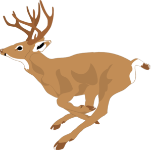 Fast clipart fast animal. Deer running clip art