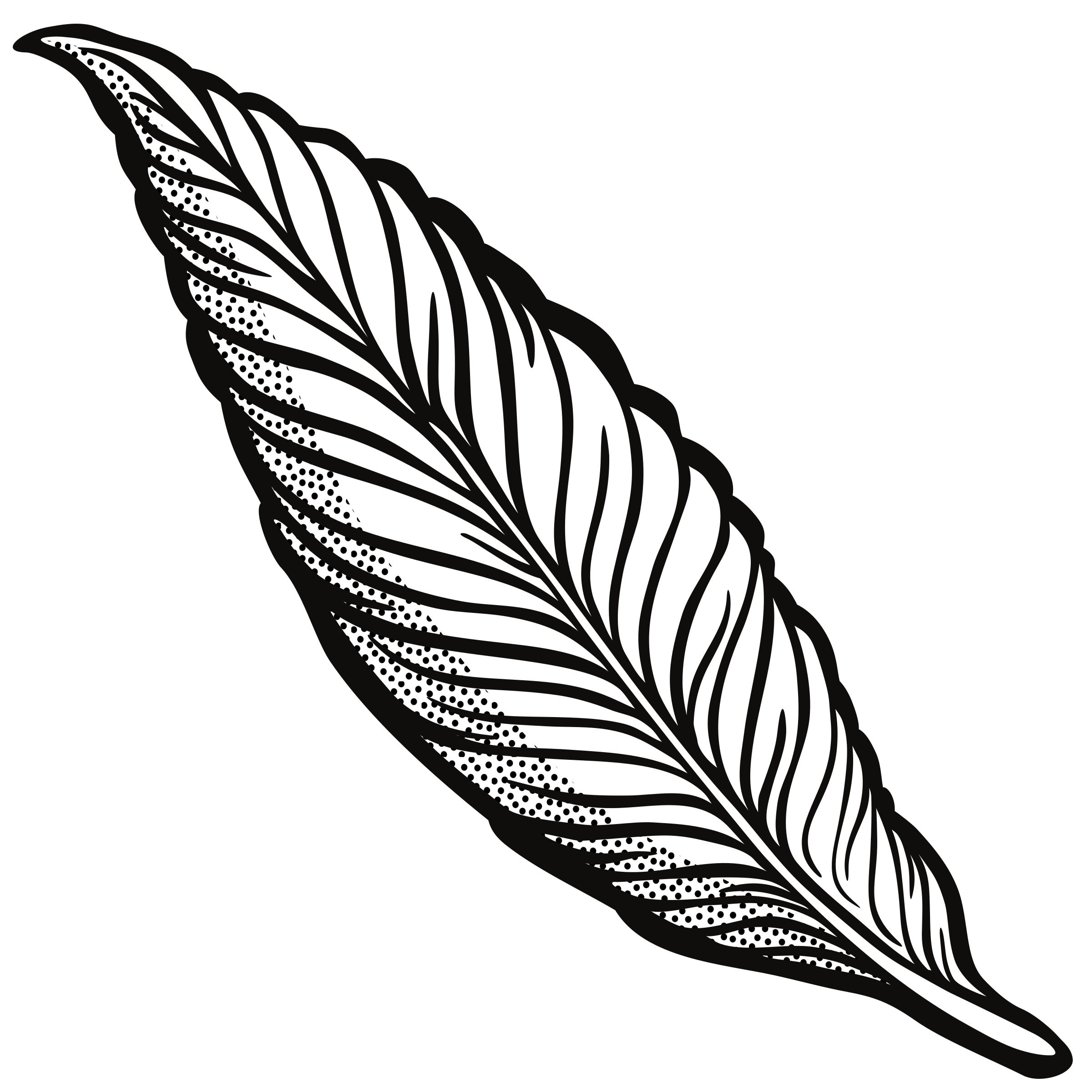 feather outline png