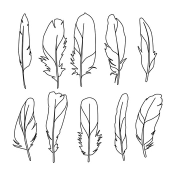 Feather clipart boho. Tribal bird drawings