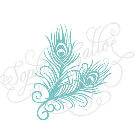 Feather clipart bunch. Peacock svg dxf digital