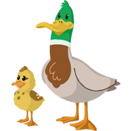 Feather clipart duck feather. Feathers garth bev ducks