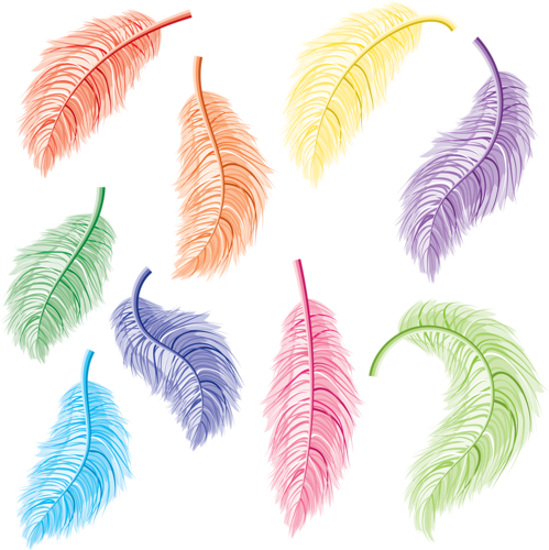 Feather clipart sticker. Feathers pinterest illustration