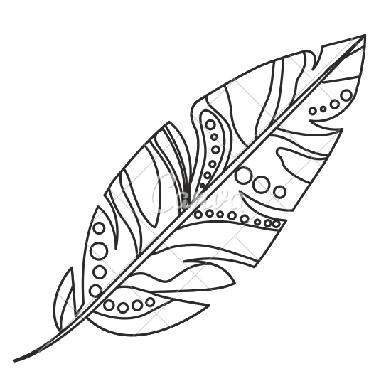 Boho feathers png. Feather line drawing at