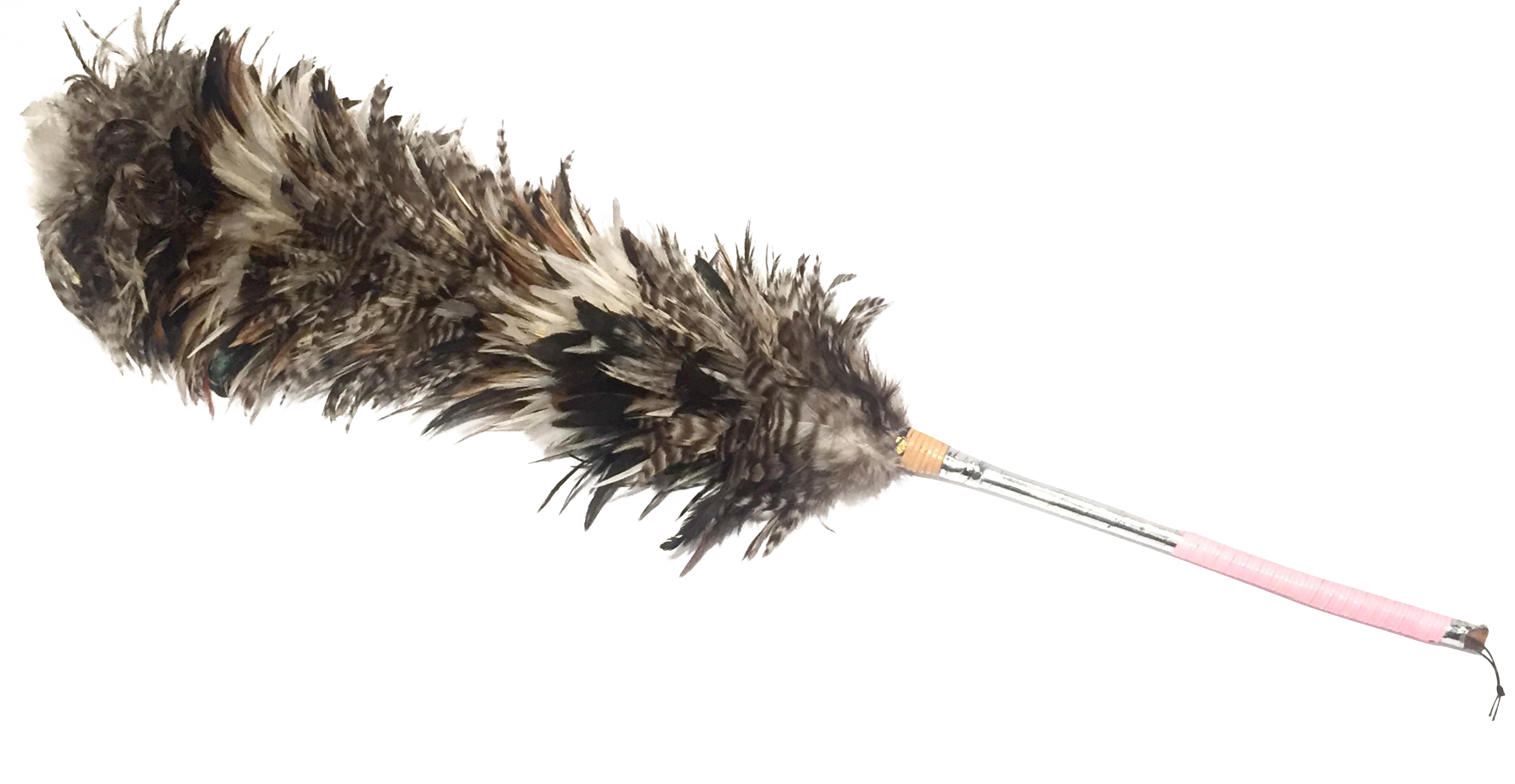 Feather duster png. Vintage long chairish