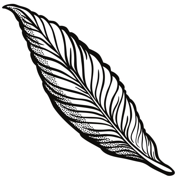 Line art quill cartoon. Drawing feather pen clip art library stock