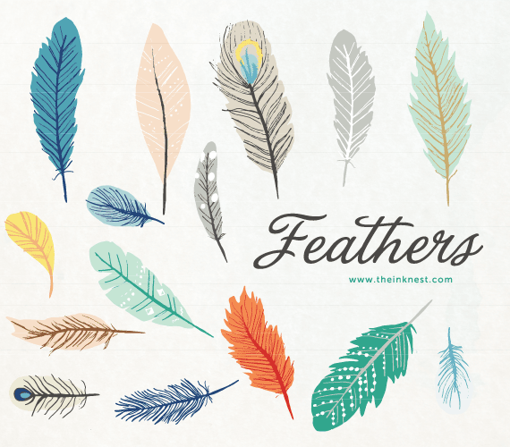 Feathers clipart geometric. Clip art and commercial