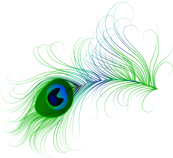 Feathers clipart png. Peacock feather clip art