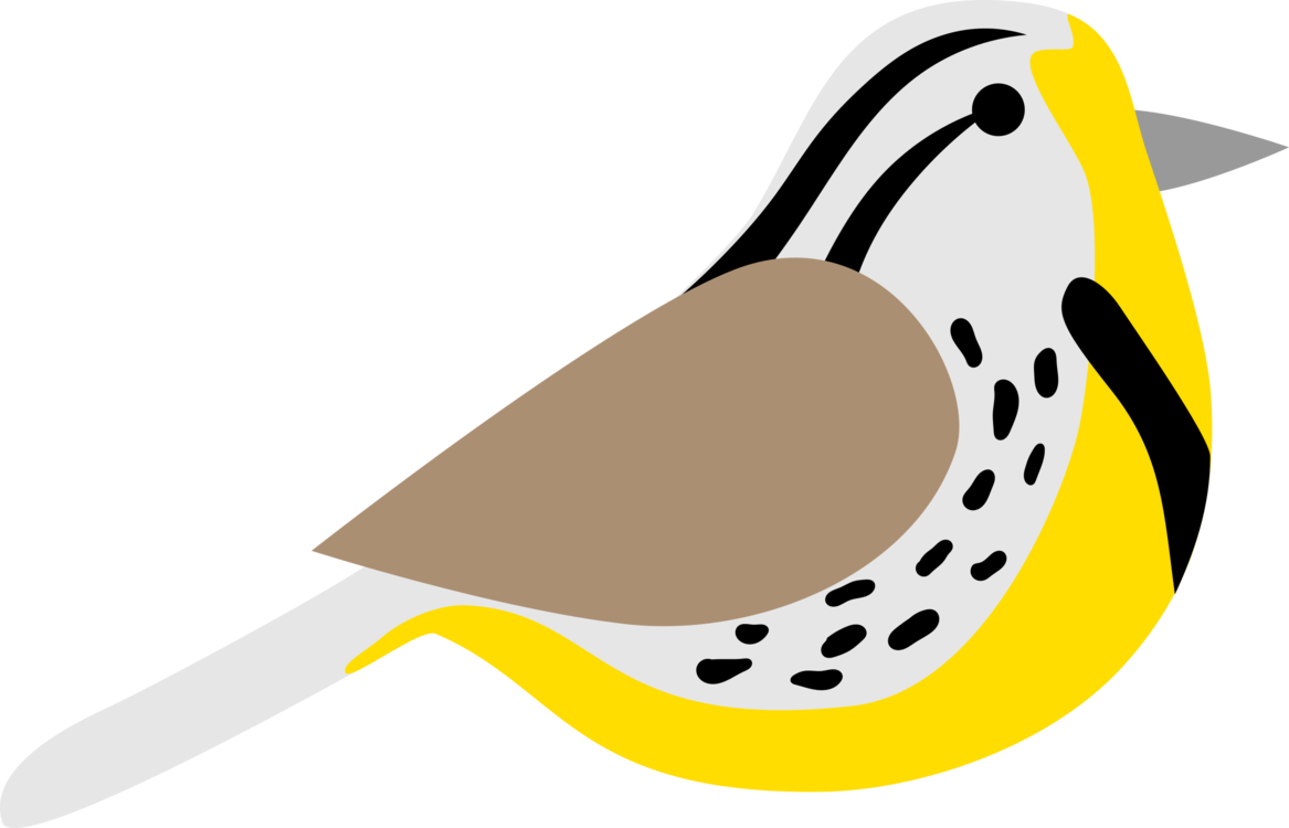 Feathers clipart western. Meadowlark state bird eastern
