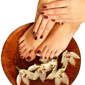 Fingernail vector beauty nail. Feet clipart images png