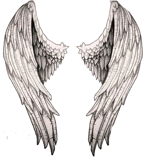 Female angels gliding art png. Pin by abby young
