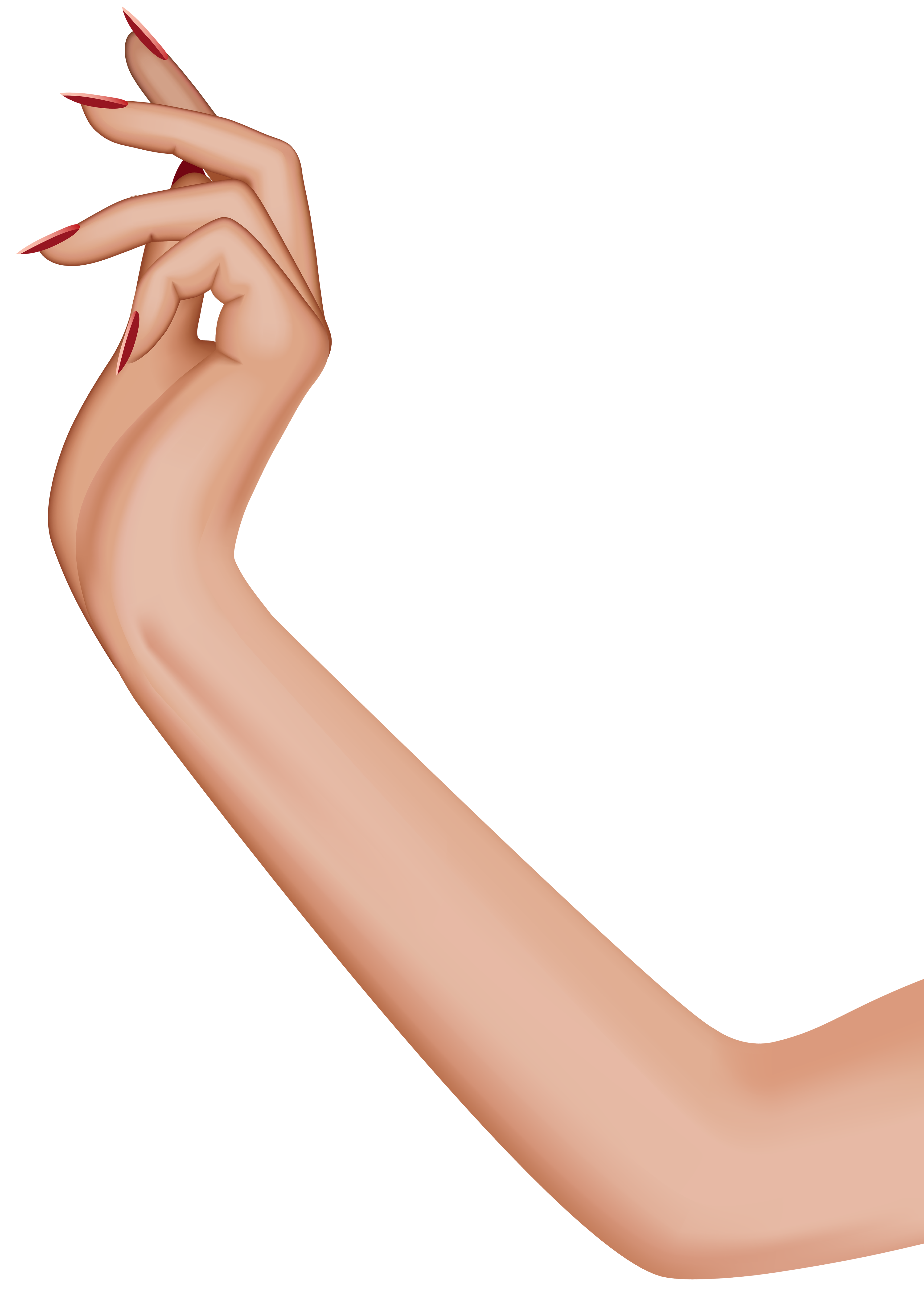 Female hand transparent clip. Girl arms png clip royalty free