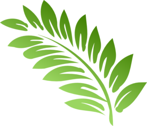 Fern clipart green fern. Free cliparts download clip