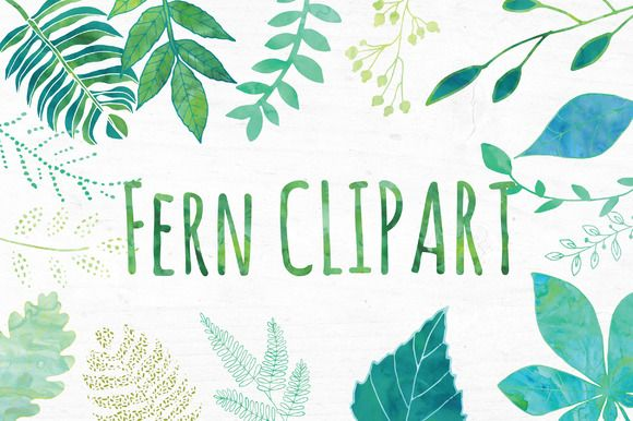 Fern clipart. Watercolor leaf set and