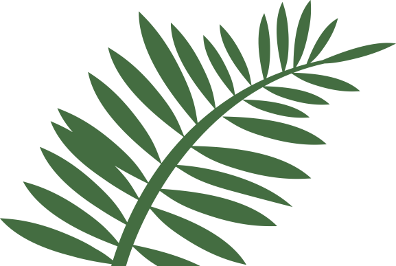 Gallery . Fern clipart leaf accent clip stock
