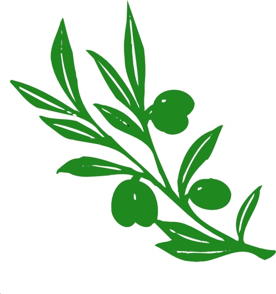 Fern clipart olive. Leaf drawing at getdrawings