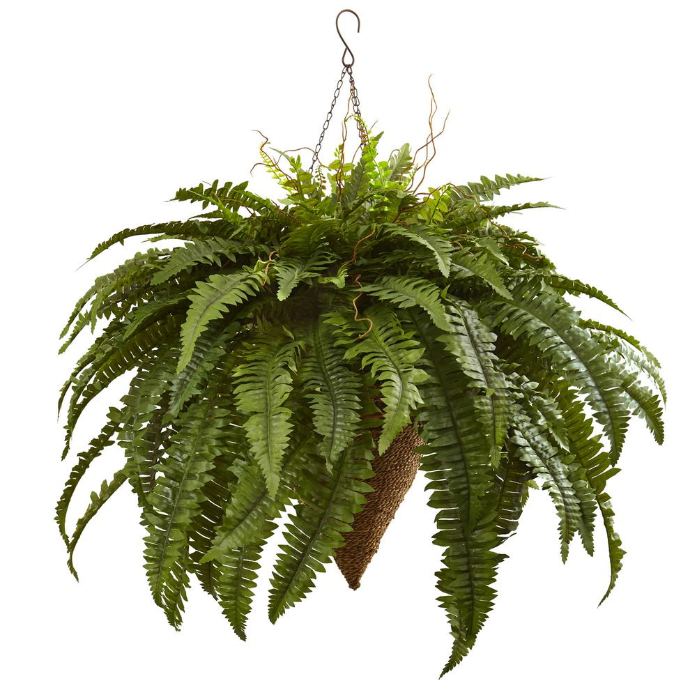 Fern clipart planter. Nearly natural giant boston