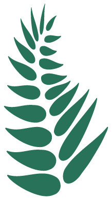 Fern clipart stencil. Leaf for painting contemporary