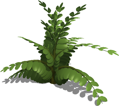 Fern leaf png. Download colours image with