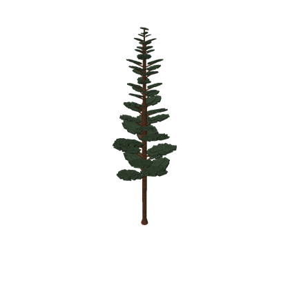 Fern pine png. Tree roblox