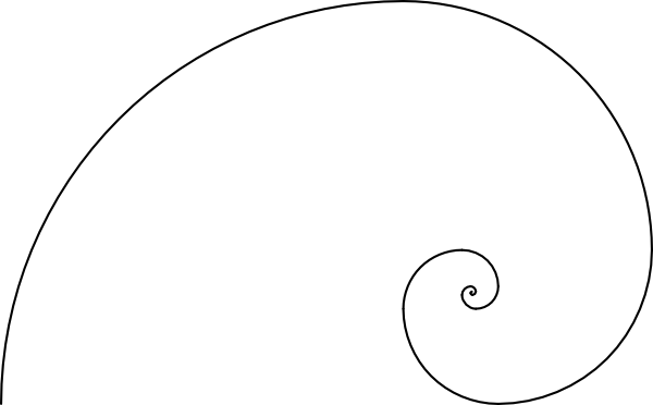 Vector spine golden. Fibonacci spiral art template