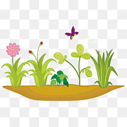 Field clipart field wildflower. Flower png vectors psd