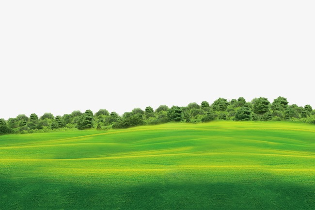 Field clipart green field. Grassland png image and