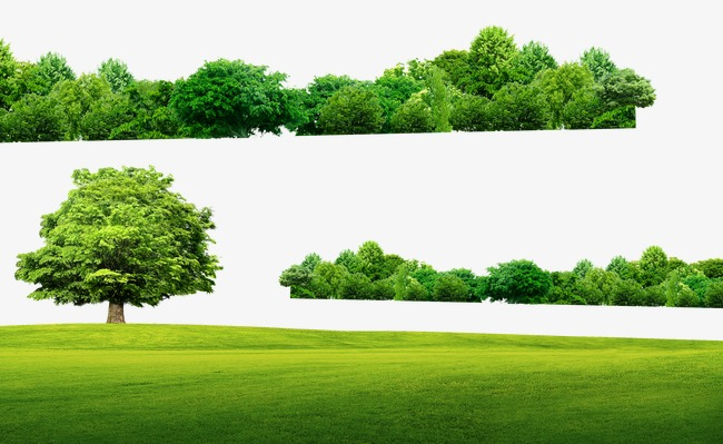 Field clipart scenery. Forest trees meadow png