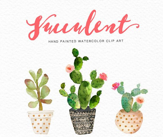 Fiesta clipart watercolor. Best images on
