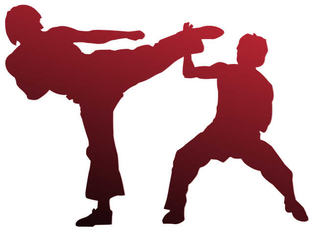 Fighter clipart kung fu fighting. Free photo shaolin pose