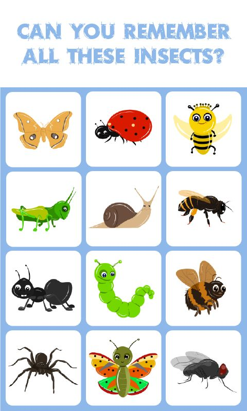 Figure clipart bad memory. Best educational games